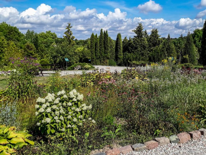 Things to do in Klaipeda: Botanical garden