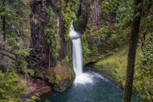 Toketee Falls: Stop on the San Francisco to Seattle Drive