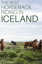 The Best Horseback Riding in Iceland: Tours & What to Expect