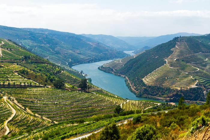 Visitng Douro Valley is a great addition to your Porto itinerary