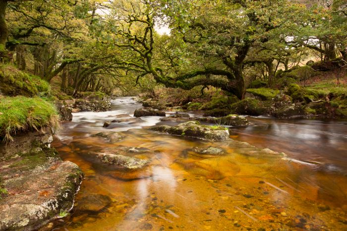 Beautiful Dartmoor National Park