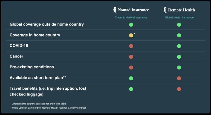 Different between SafetyWing Nomad Insurance & Remote Health policies