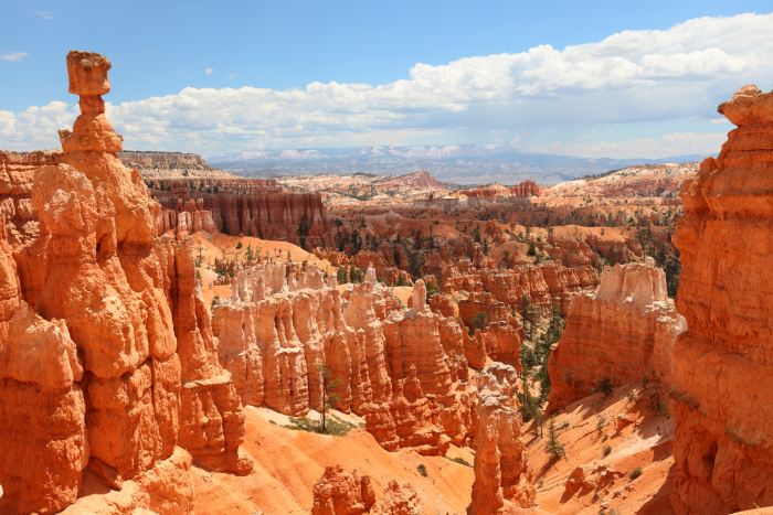 Bryce Canyon is a great additional to a Zion National Park Day Trip