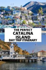 The Perfect Catalina Island Day Trip Itinerary