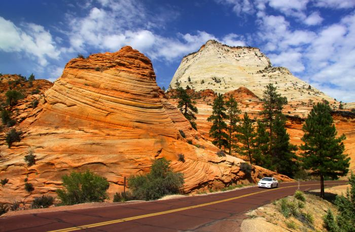 Scenic drive in Zion national park