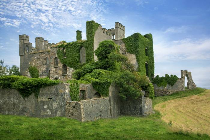 Clifden Castle