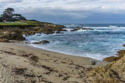 The Perfect Day Trip to Monterey from San Francisco