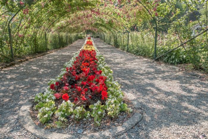Urban Garden in Point Defiance Park
