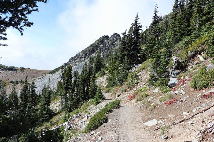 Sunrise Trail in Mt Rainier