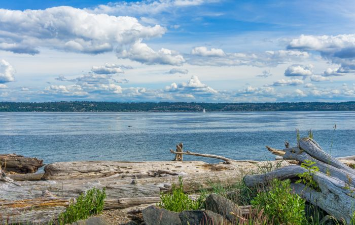 View of West Seattle from Vashon Island