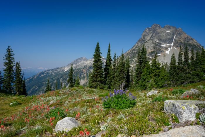 Hiking along the Maple Pass Trail